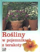 Rośliny w pojemnikach z terakoty